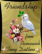 Friendship award from Pemaweb Award (opens in new window)